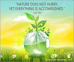 Earth Day Quotes Magnificent Earth Day Quotes Earth Day Quotes Sayings Dgreetings