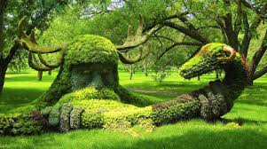 montreal botanical garden montreal canada viging snake composition trees horn park wallpaper