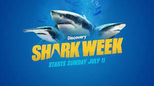 Shark Week 2021 | Discovery
