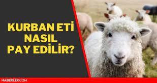 Kurban eti nasıl pay edilir? Kurban eti nasıl, kaç kişiye dağıtılmalı?  Diyanet kurban eti dağıtımı hakkında soruları yanıtladı! - Haberler