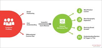 Customer Profile Customer Profile Analysis Centric Brand Advisors 12
