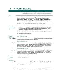 curriculum vitae samples pdf template resume builder cv resume samples pdf term papers written the best essay inside curriculum vitae samples
