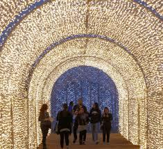 Arlington Christmas Lights 2018 Enchant Christmas