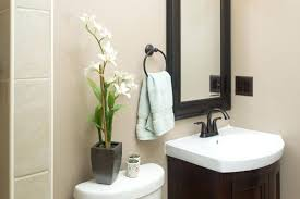 Half Bathroom Decor Ideas Impressive Design Inspiration