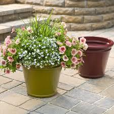 container garden. Basic Container Gardening Elements Garden