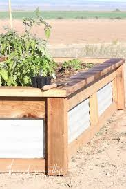 diy raised garden boxes the wood