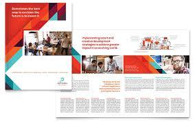 Application Software Developer Brochure Template Design