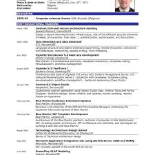 Combination Resume Template Example Good With Regard To Examples Of