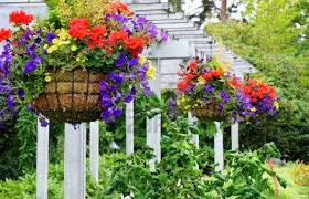 Image result for flower baskets
