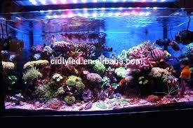 full image for aquarium led lights led reef aquarium lighting reviews 3ft diy waterproof