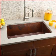 Marvelous Kitchen Sink Buying Guide Pennstateupuacom