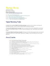 Digital Marketing Resume Sample Best Of Political Campaign Manager Resume Example Luxury Letsdeliverco