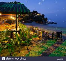 The Tree House KP » Rates U0026 ContactsTreehouse Koh Phangan