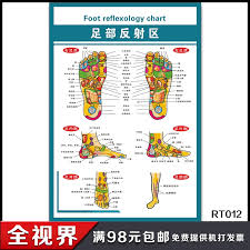 Buy Big Foot Reflex Zone Flipchart Foot Reflexology Foot
