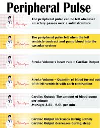 Peripheral Pulses Charting Peripheral Pulse Google Search Nursing Assessment Nclex