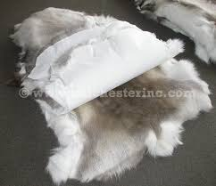 see another picture of the front and back of a reindeer hide