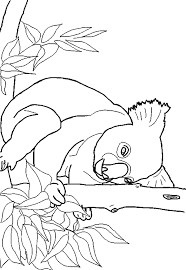 Different levels of details and styles are available. Koala Coloring Free Animal Coloring Pages Sheets Koala
