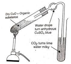Qualitative Analysis Of Organic Compounds Qualitative