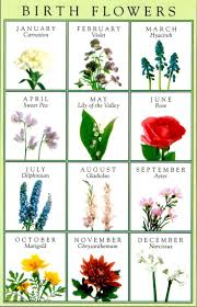 Month Flowers Chart June Birth Flower Rose The Month Tattoo Smartvertising Co