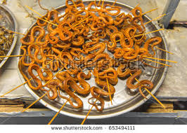 Image result for snake eatables in china