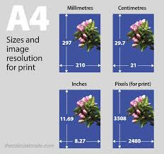 a4 paper size in inches what are the width and height of a4 paper