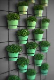 wall-mounted-planters