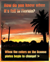 Florida Quotes Classy How Do You Know When Its Fall In Florida