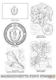 Small Picture Massachusetts State Symbols coloring page Free Printable