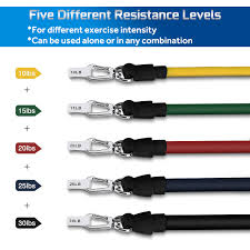 Zmoon <b>11PC Resistance Bands Set</b>, Workout Bands - with Door ...