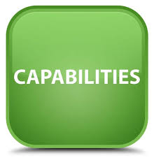 5 Critical Capabilities For Successful Information Governance Revised