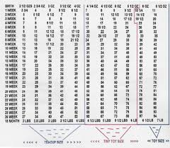 Mastiff Height Chart French Mastiff Puppy Growth Chart Goldenacresdogs Com