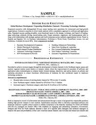 Template Senior Sales Executive Resume Examples Objectives