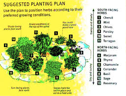 how to lay out a garden. How To Grow Your Own Herbs Planning A Herb Garden Layout Lay Out