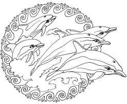 Dolfijnen Mandala Kleurplaten Mandala Kleurplaten Kleurplaten
