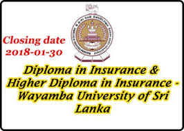 diploma higher diploma in insurance government jobs government  diploma higher diploma in insurance