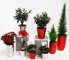 Festliche Künstliche Arrangements Und Dekorative Weihnachtsbäume