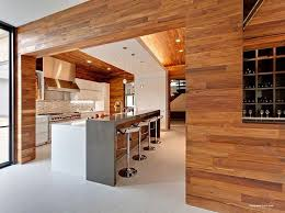 dramatic kitchen with wood panels