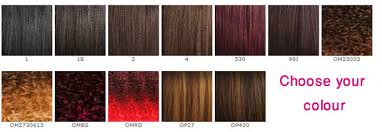 Freetress Color Chart Wigs And Hair Care Freetress Equal Synthetic Hair Wig Vixen