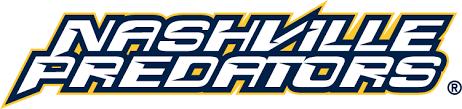 Nashville Predators 1998 99-2002 03 Wordmark Logo Iron On Sticker ...