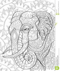 Elephant Coloring Book Page Stock Illustration Illustration Of
