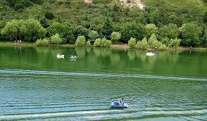 Image result for turtle lake tbilisi