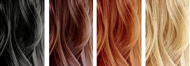 Hair Colors Bleach Color Haircolour Examples Fascinating