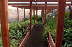 Small Picture Garden Shade Structures Southwest Gardener