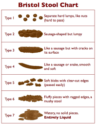 Stool Movement Chart Bristol Stool Chart Faecal Continence Foundation Of