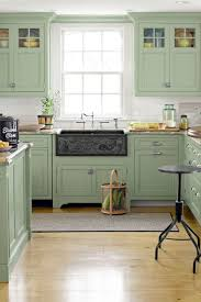 ... Cabinet Light, Shrock Premier Light Green Kitchen Cabinets Color  Design: modern light green kitchen ...