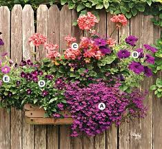 Six Container Gardening Ideas You Need To KnowContainer Garden Ideas For Shade
