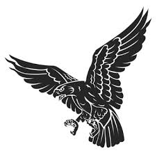 hawk clipart. Simple Clipart Hawk Clipart Diving Library Throughout Clipart