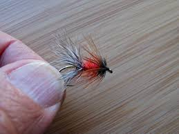 Wet Fly Patterns Interesting Design