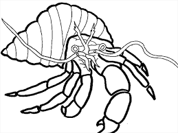 Small Picture Crab Claw Coloring PageClawPrintable Coloring Pages Free Download