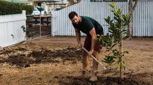 landscaper licensing requirements by